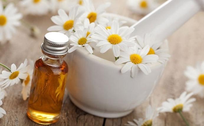 Thành phần hoa cúc trị mụn hiệu quả